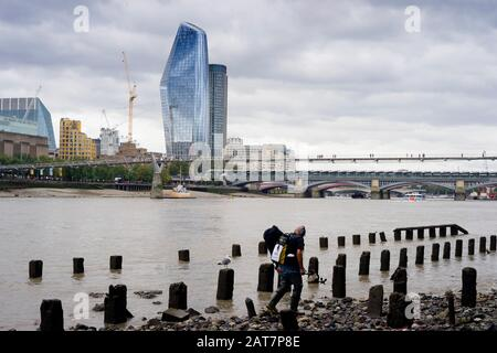 A man with a metal detector works his way along the Thames foreshore looking towards the Walkie Talkie building. With ancient posts exposed, is a popular place for mudlarking and archaeological finds. - Stock Photo