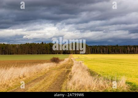 Beautiful snowless landscape in the countryside at winter. Warm day in january. Czech Republic. - Stock Photo