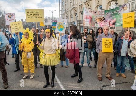 Hundreds of people in Madrid join a demonstration campaigning for the survival of bees in Spain.  Filmed on January 31, activists are seen wearing bee - Stock Photo