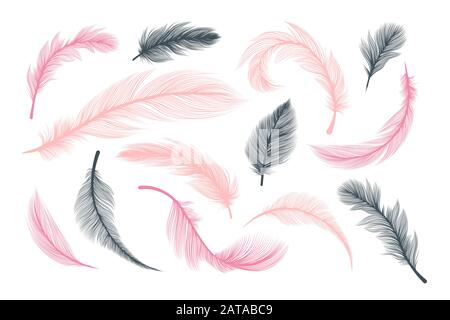 Feathers, vector pink and black fluffy quill plumes isolated on white background. Abstract feathers with realistic plumage texture pattern, wedding and birthday design elements, softness concept - Stock Photo