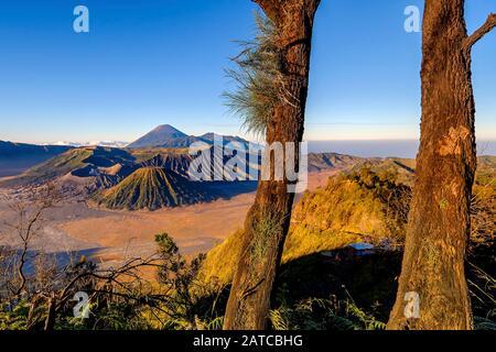 Mount Bromo at sunrise, Bromo Tengger Semeru National Park, East Java Province Indonesia - Stock Photo