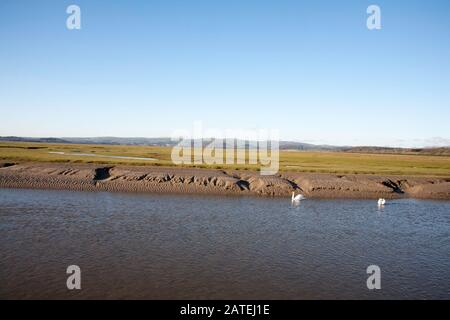 The channel of the River Eea Marshland Sand Gate near the village of Flookborough the  shore of Morecambe Bay  a winter day  South Lakes Cumbria - Stock Photo