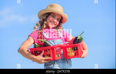 Village rustic style. Vegetables market. Sunny day at farm. Selling homegrown food concept. Natural vitamin nutrition. Organic vegetables. Girl cute child farming. Gathering vegetables in basket. - Stock Photo