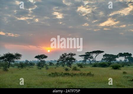 landscape with sunrise in Serengeti National Park, UNESCO world heritage site, Tanzania, Africa