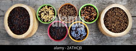 various bowls with watered microgreens like radish or barley in it, wooden background Stock Photo