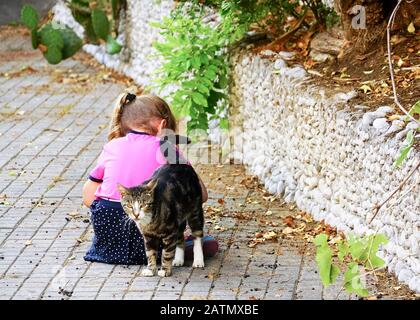 The cat snuggled up to the sitting girl on the street . Yalta. Crimea. - Stock Photo