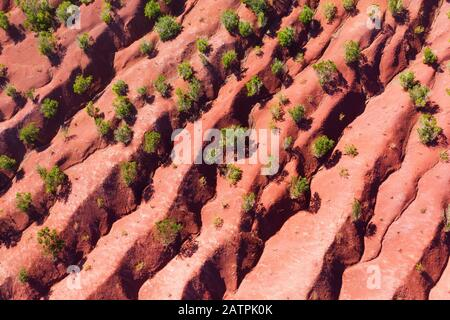 Terraced eroded mountainside, shrubs on red earth, near Agulo, drone photograph, La Gomera, Canary Islands, Spain - Stock Photo