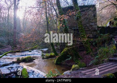 Sad remains of an old gunpowder building, now surrounded, enveloped, almost completely hidden by encroaching trees beside the original power streams. - Stock Photo