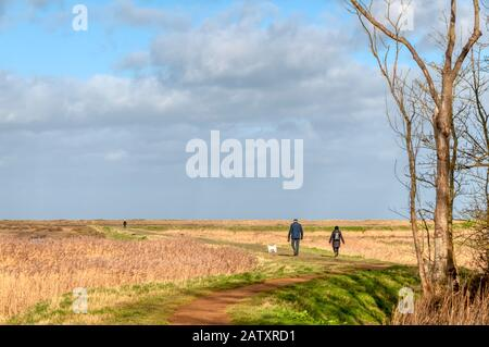 A couple exercising their dog along Gypsy Lane crossing the coastal marshes at Titchwell on the north Norfolk coast on a bright February day. - Stock Photo