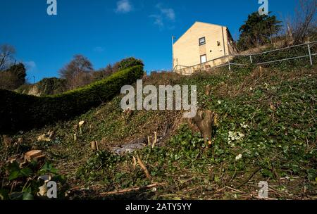 House at the top of a steep garden - Stock Photo
