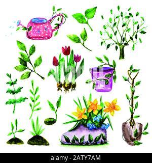 set of hand drawn spring gardening tools. watercolor illustration - Stock Photo