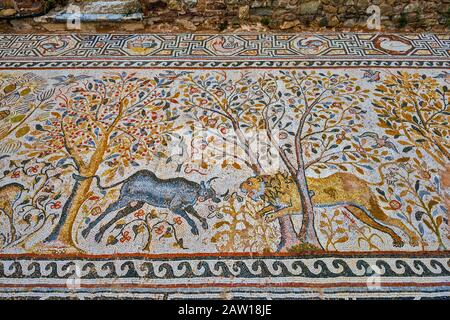 Mosaic, 6th century, Great Basilica at Heraclea Lyncestis, ancient Greek and Roman city ruins, near Bitola, North Macedonia - Stock Photo