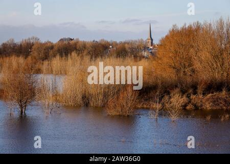 Wesel, North Rhine-Westphalia, Lower Rhine, Germany, Lippe, flood in the renaturalised floodplain area at the mouth of the river Lippemuendung into th - Stock Photo