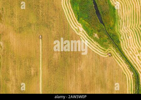 Aerial View Of Rural Landscape. Combine Harvester Working In Field, Collects Seeds. Harvesting Of Wheat In Late Summer. Agricultural Machine Collectin - Stock Photo