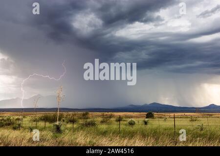 A bright lightning strike flashes from a monsoon storm near Sonoita, Arizona, USA. - Stock Photo