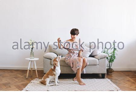 Attractive smiling girl wears retro dress posing in room decorated with vase and plant. Indoor portrait of amazing woman playing with beagle dog while it waits for food. - Stock Photo