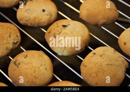 Close-up of some homemade cookies chilling on a tray after leaving the oven - Stock Photo
