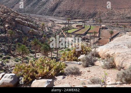 Barranco de las Peñitas, Vega de Río Palmas, Fuerteventura, Canary Islands - Stock Photo
