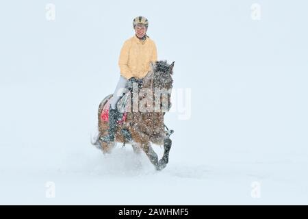 Riding out in winter during heavy snowfall, christmas colors gold red silber - Stock Photo