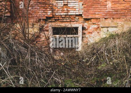 Destroyed wall. old overgrown window in brick wall of ruined building - Stock Photo
