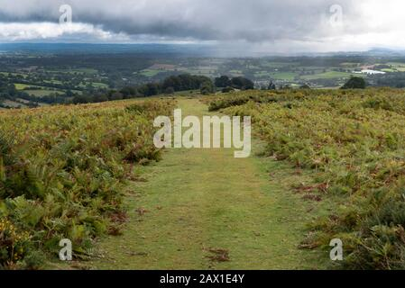 Offa s Dyke is a long distance path on the border between Wales and England,here near Hay on Wye, popular with serious walkers - Stock Photo