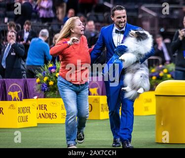 New York, USA. 10th Feb, 2020. Handler and co-owner Tyler Crady holds Conrad the Shetland sheepdog as his mother Erin Tyler reaches to congratulate him after winning the Herding group category at the 144th Westminster Kennel Club Dog show in New York city's Madison Square Garden. Conrad's formal competition name is Syringa-Akadia The Corsair.  Credit: Enrique Shore/Alamy Live News - Stock Photo