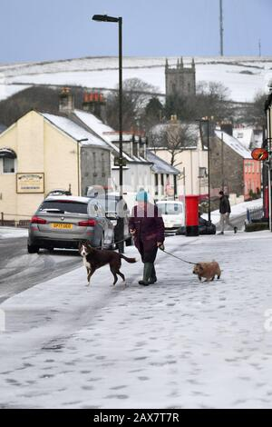 A dog walker walks along snow covered footpaths in Princetown on the top of Dartmoor, Devon, where snow has fallen on high ground. - Stock Photo