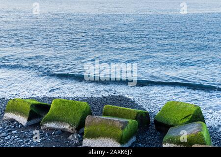 Green algae covered concrete blocks on a stony beach in Playa San Juan, Tenerife, Canary Islands, Spain - Stock Photo