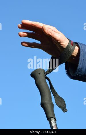 Wrist strap on trekking pole. Put your hand through the loop from underneath, and pull the trailing end to adjust for fit. Correct use. - Stock Photo
