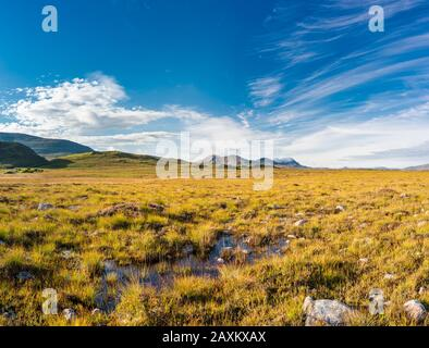 View across bogland towards the Derryveagh Mountains, including the iconic Mount Errigal, from bogland near Falcarragh, County Donegal, Ireland Stock Photo