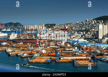 South Korea, Yeongnam Region, Busan, Port of Busan with view of tug boat moorings at Yeongdo Island. - Stock Photo