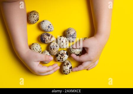 Children hands holding many quail eggs on light background. Concept of organic product. Place for text food - Stock Photo