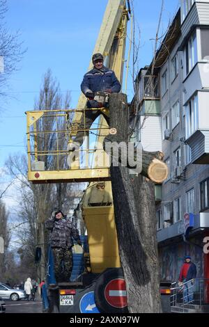 Municipal worker cutting dead standing tree with chainsaw using truck-mounted lift. February 11, 2020. Kiev, Ukraine - Stock Photo