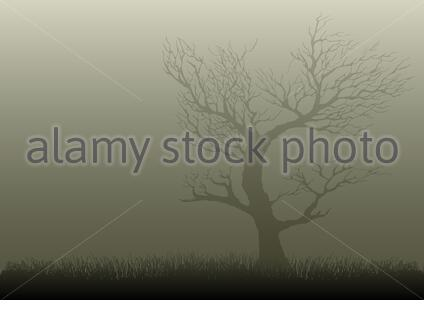 Illustration of a dried tree in misty night - Stock Photo