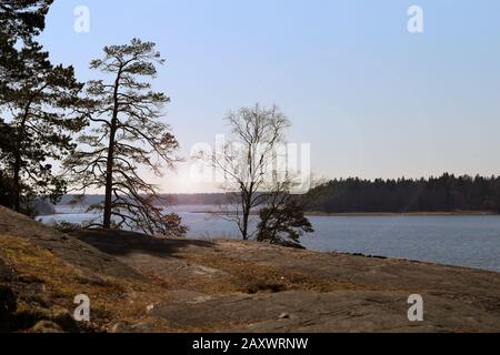 Beautiful landscape from Southern Finland. There is Baltic sea, clear blue sky, some rocks and trees. The rocks are covered in lichen and debri. - Stock Photo