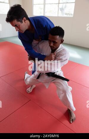 Judokas training in a gym