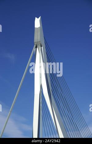 Erasmusbridge over the Nieuwe Maas in Rotterdam, N