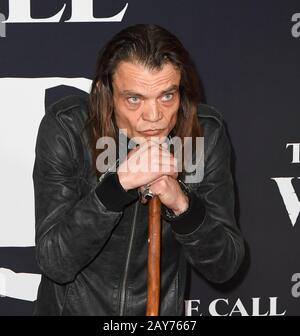 "Los Angeles, USA. 13th Feb, 2020. Micah Fitzgerald . ""The Call of the Wild"" Twentieth Century Studios World Premiere held at El Capitan Theater. Credit: MediaPunch Inc/Alamy Live News - Stock Photo"