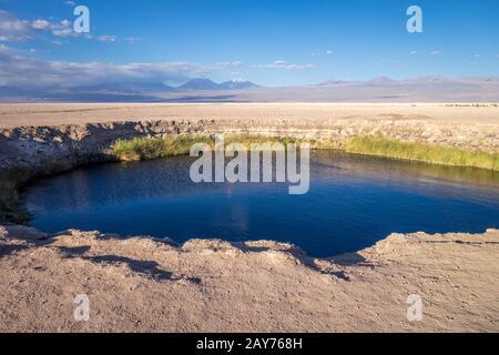 Ojos del salar landmark in San Pedro de Atacama, Chile - Stock Photo