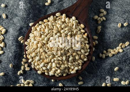 Raw Organic Italian Pearl Barley in a Bowl - Stock Photo