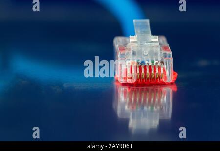 Network Ethernet Cable isolated on a blue background close-up - Stock Photo