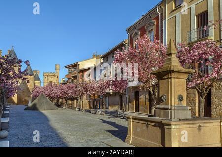 Street in Olite, Navarre, Spain - Stock Photo