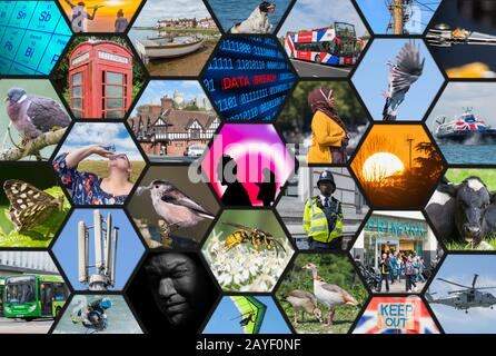 Collection of editorial Alamy stock photos. Collage of stock images to illustrate stock photography. Stock imagery collection. Stock library. - Stock Photo