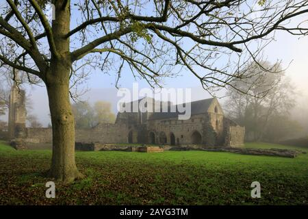Valle Crucis Abbey near Llangollen in North Wales. - Stock Photo