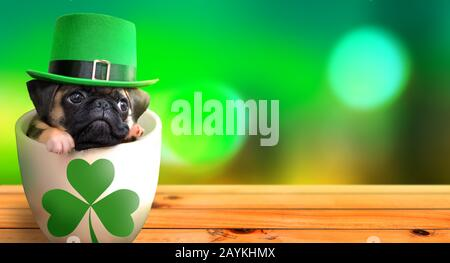 Cute pug puppy inside a mug wearing a leprechaun hat. Saint Patrick's Day theme concept. - Stock Photo
