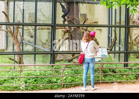 18 MAY 2018, BERLIN, GERMANY: young child kid with mother looking at monkey in the Zoo