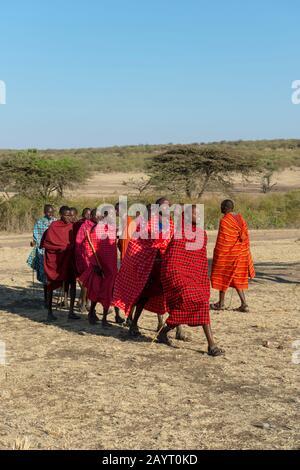 Young Maasai men performing a traditional jumping dance in the Masai Mara in Kenya. - Stock Photo