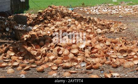 Pile of coconut shells on the ground being prepared for processing into charcoal in the Philippines. - Stock Photo