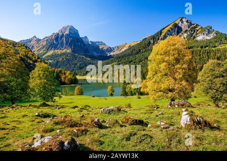 sycamore maple, great maple (Acer pseudoplatanus), lake Obersee and Bruennelistock in autumn, Switzerland, Glarner Alpen, Glarus