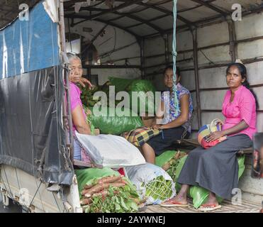 Dambulla, Sri Lanka: 18/03/2019: Women workers at wholesale vegetable market sitting in the rear of a truck with sacks of vegetable produce. - Stock Photo